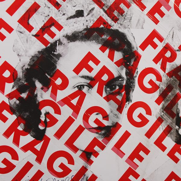 Danger Queen (Close-up) by Barrie J Davies