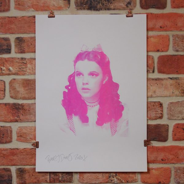 Pink Dorothy by Barrie J Davies