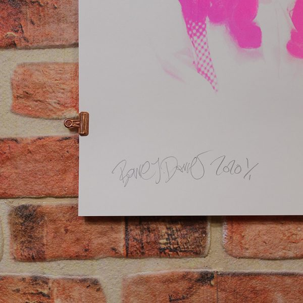 Pink Dorothy (Signature/Edition) by Barrie J Davies